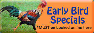 Early Bird Specials